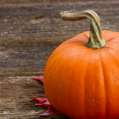 Let Your Excitement for Pumpkins Benefit Your Oral Health ~ For News